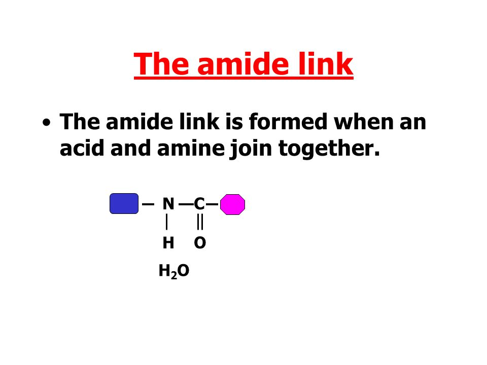 The amide link The amide link is formed when an acid and amine join together. N H C O H2O