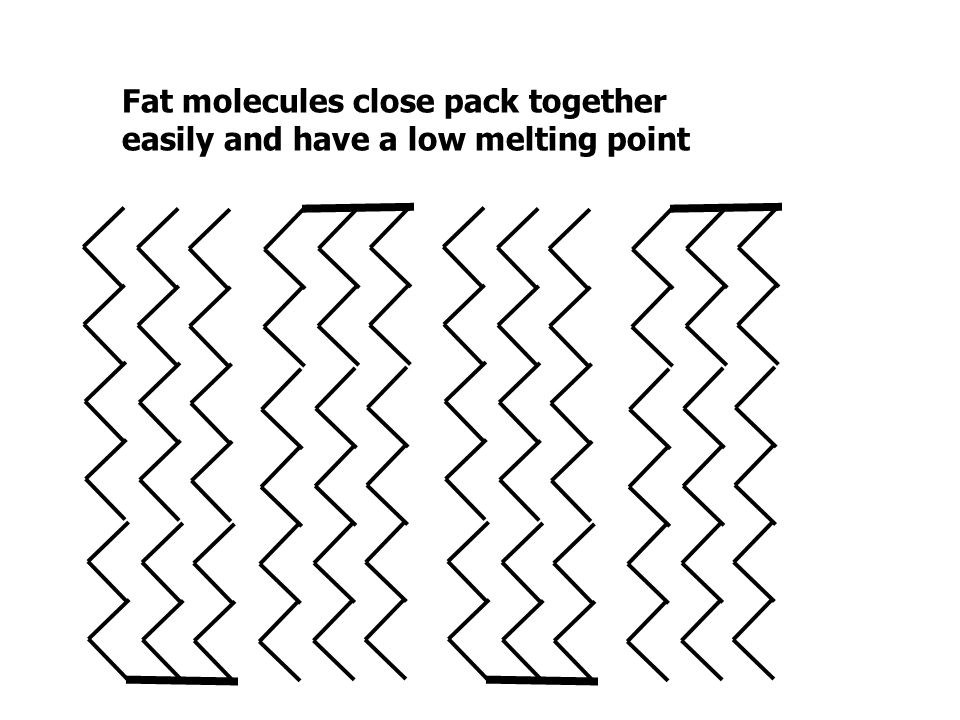 Fat molecules close pack together
