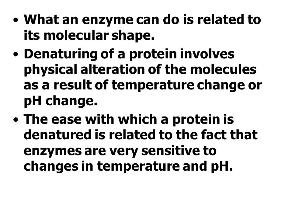 What an enzyme can do is related to its molecular shape.
