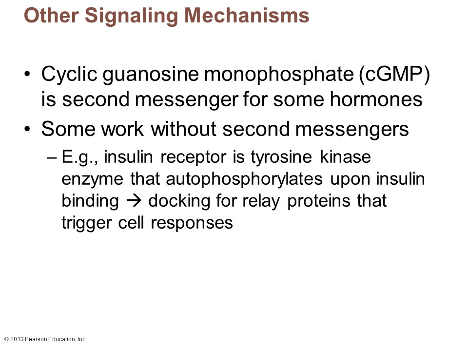 Other Signaling Mechanisms