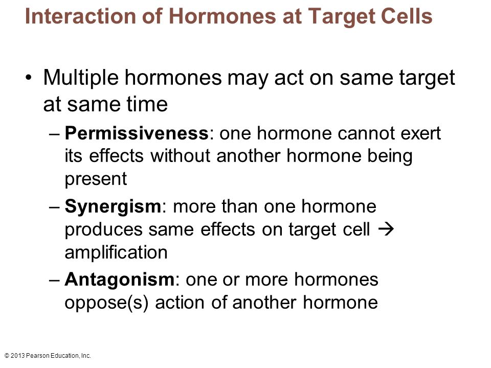 Interaction of Hormones at Target Cells