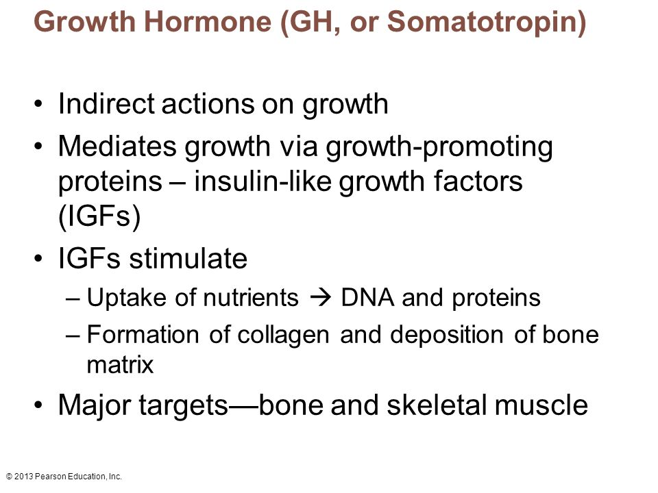 Growth Hormone (GH, or Somatotropin)