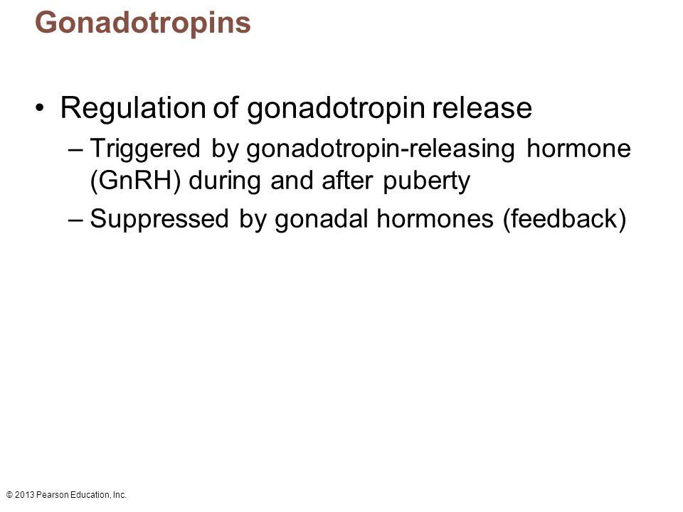 Regulation of gonadotropin release