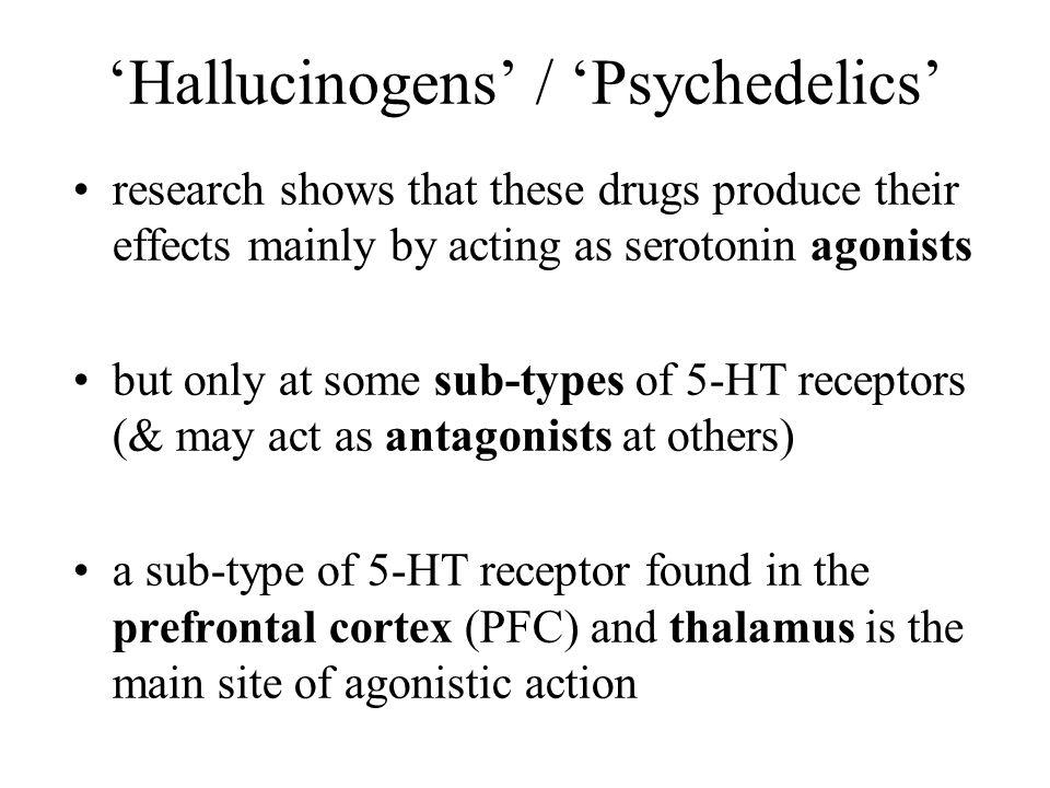 'Hallucinogens' / 'Psychedelics'