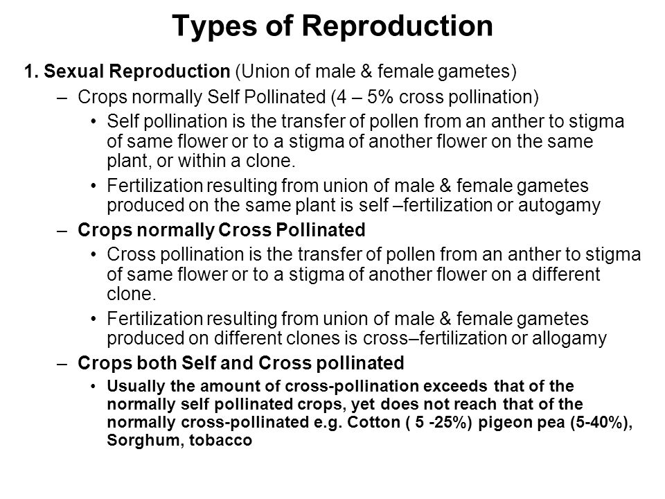 Types of Reproduction 1. Sexual Reproduction (Union of male & female gametes) Crops normally Self Pollinated (4 – 5% cross pollination)