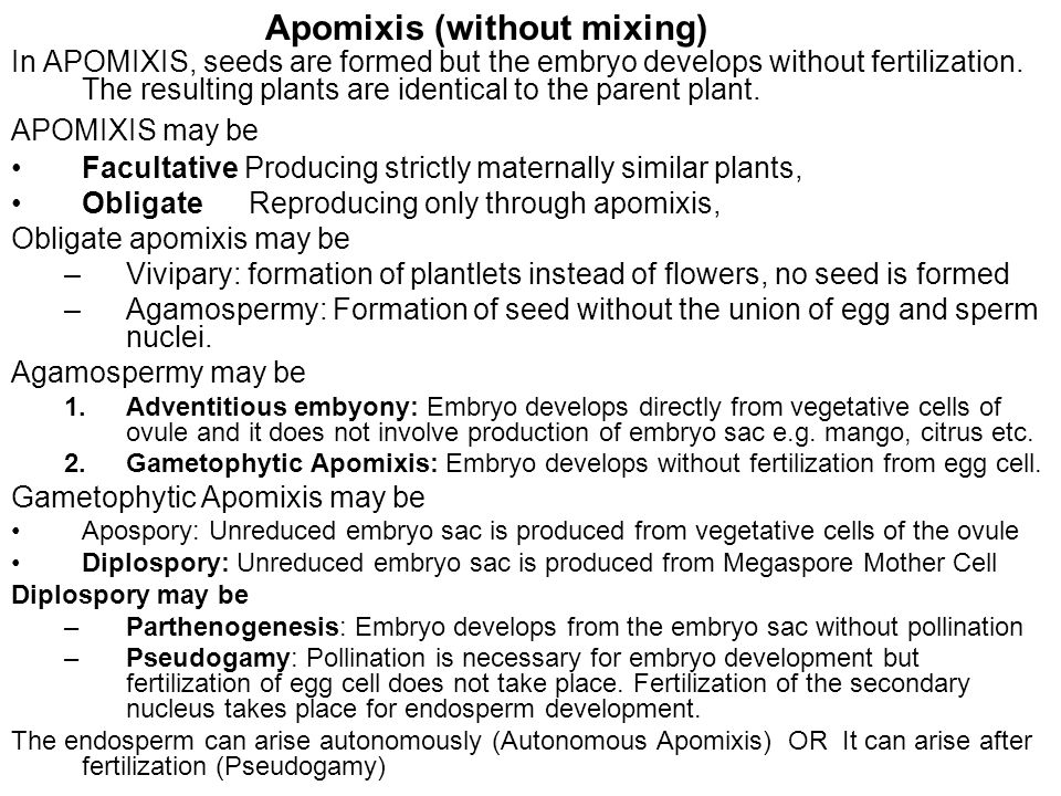 Apomixis (without mixing)