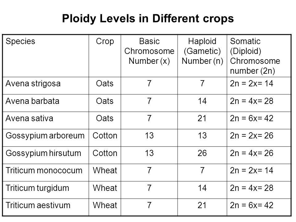 Ploidy Levels in Different crops
