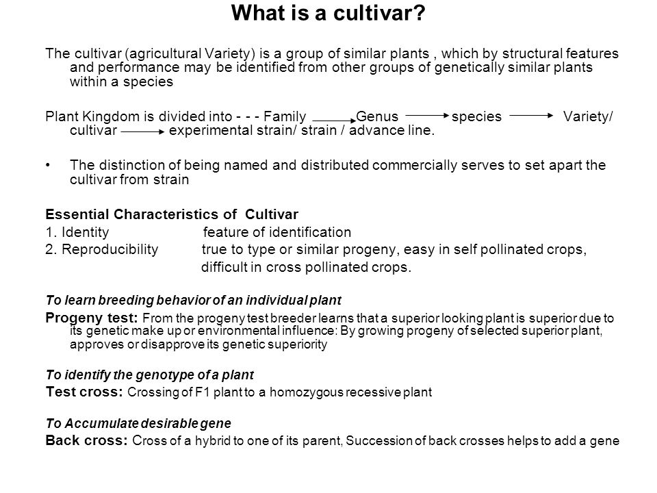 What is a cultivar