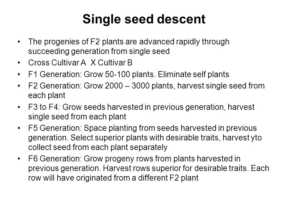 Single seed descent The progenies of F2 plants are advanced rapidly through succeeding generation from single seed.