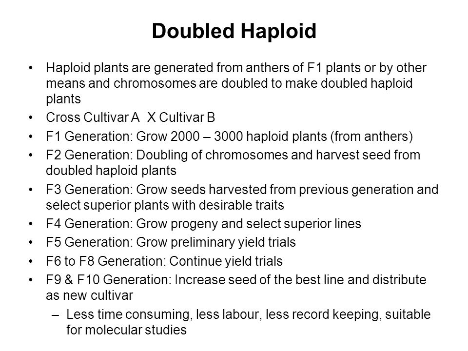 Doubled Haploid Haploid plants are generated from anthers of F1 plants or by other means and chromosomes are doubled to make doubled haploid plants.