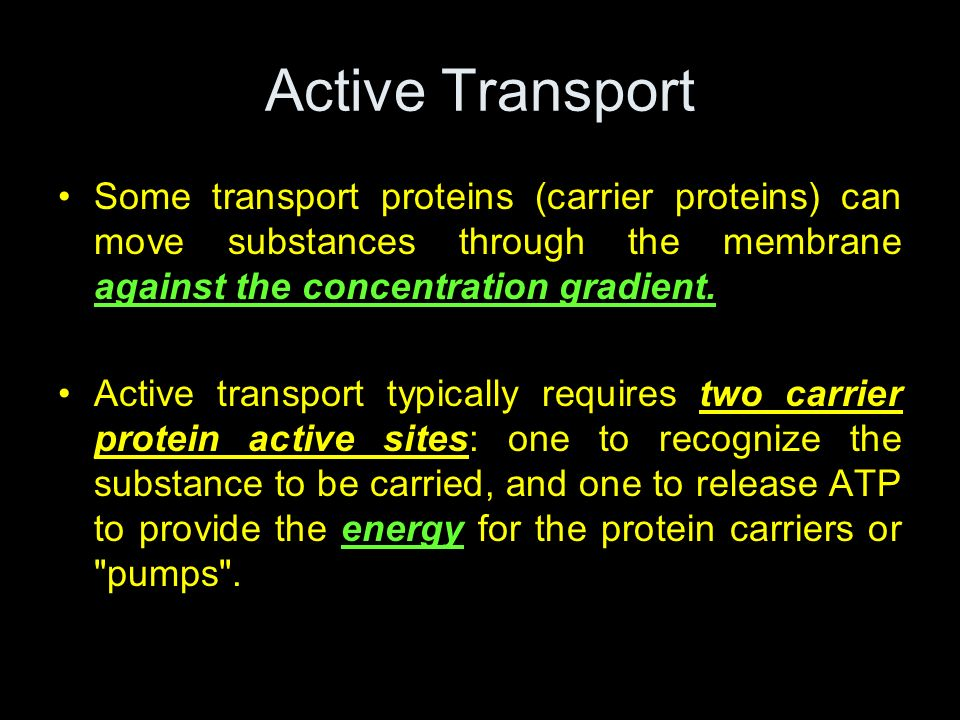 Active TransportSome transport proteins (carrier proteins) can move substances through the membrane against the concentration gradient.