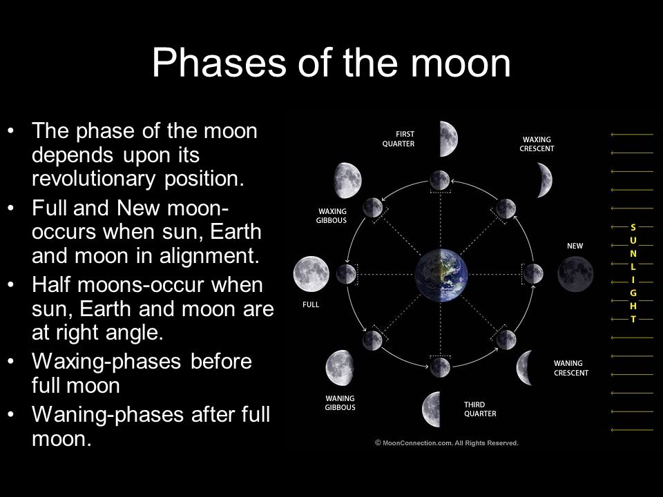 Phases of the moon The phase of the moon depends upon its revolutionary position. Full and New moon- occurs when sun, Earth and moon in alignment.