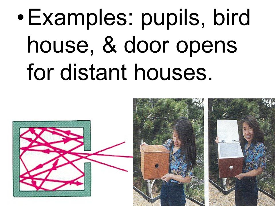 Examples: pupils, bird house, & door opens for distant houses.