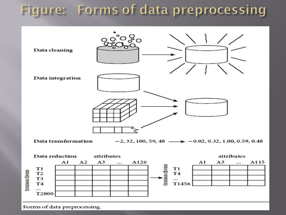 Figure: Forms of data preprocessing