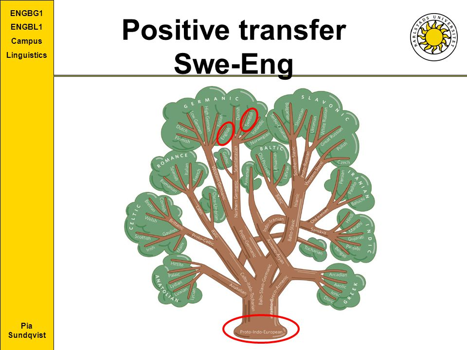 Positive transfer Swe-Eng