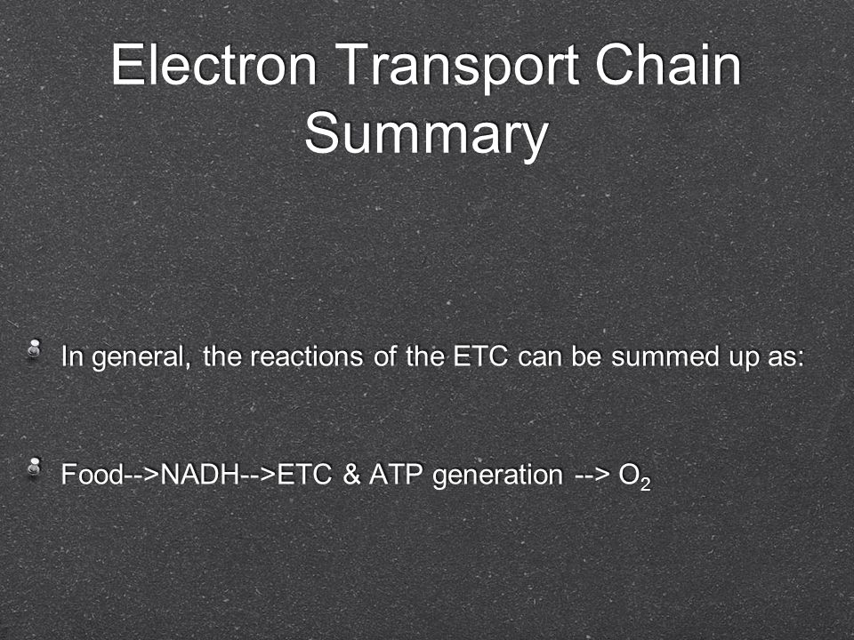 Electron Transport Chain Summary