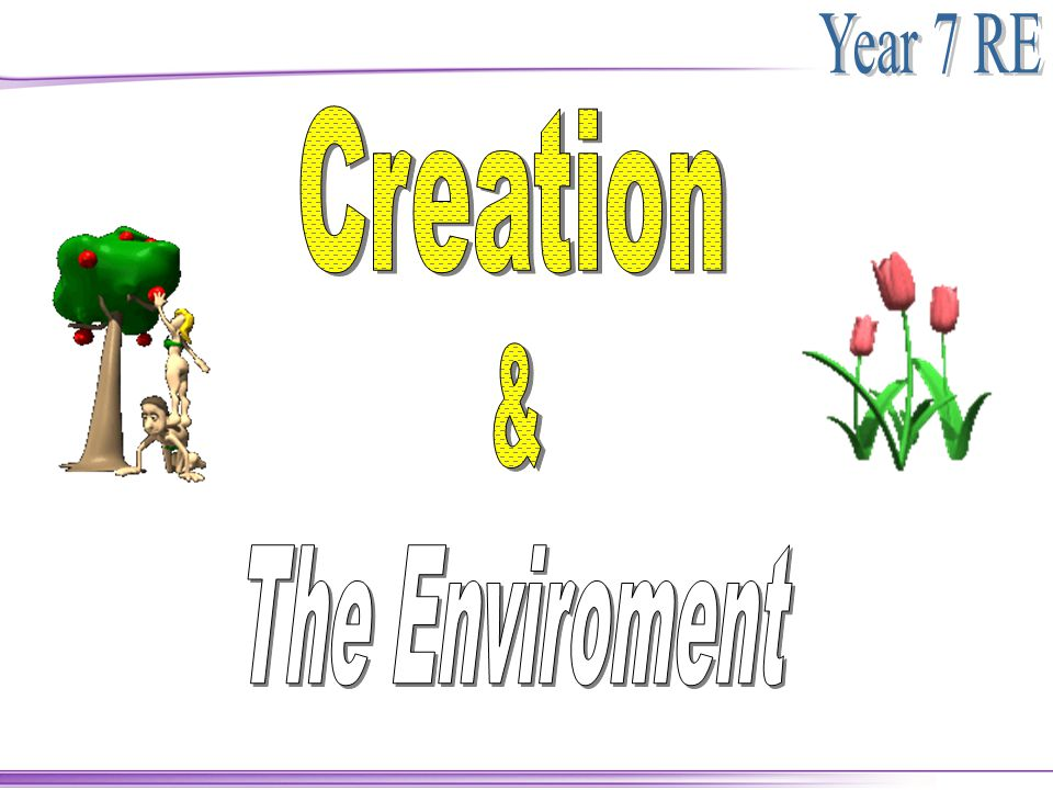 Creation & The Enviroment