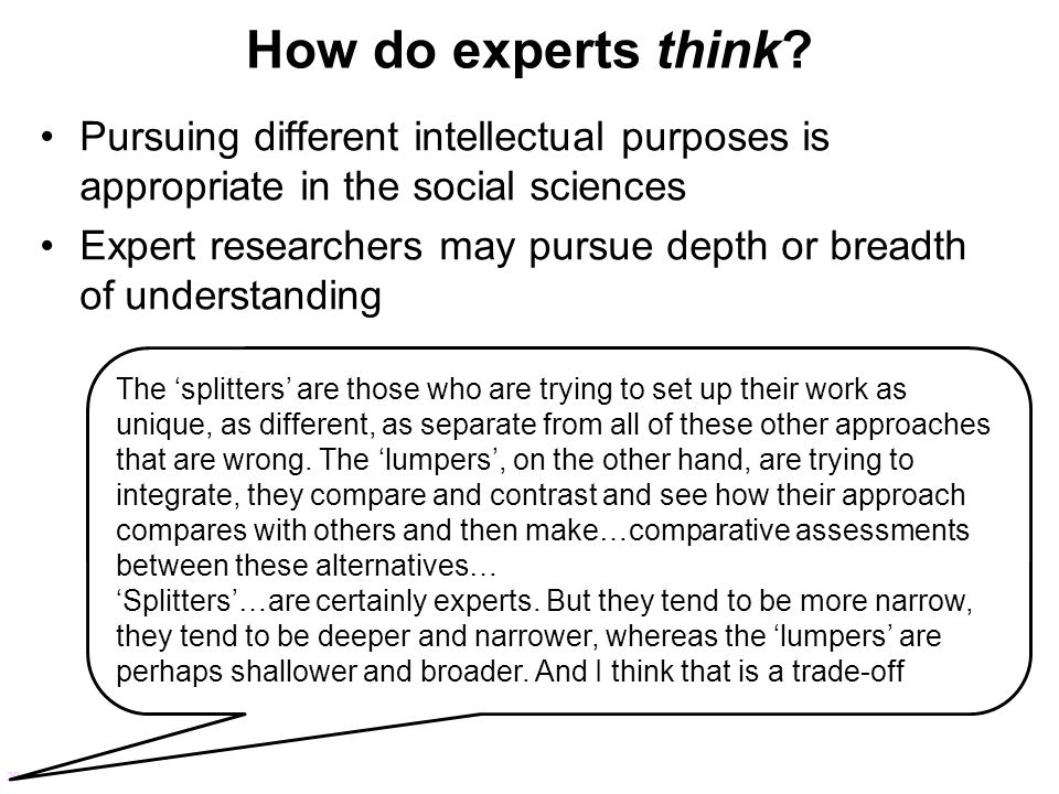How do experts think Pursuing different intellectual purposes is appropriate in the social sciences.