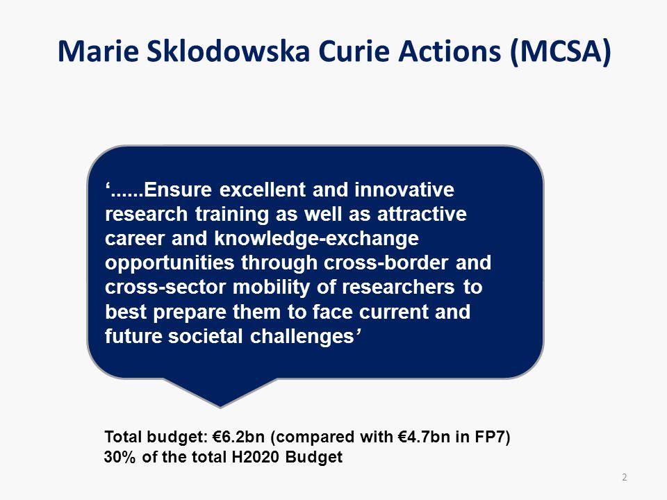 Marie Sklodowska Curie Actions (MCSA)