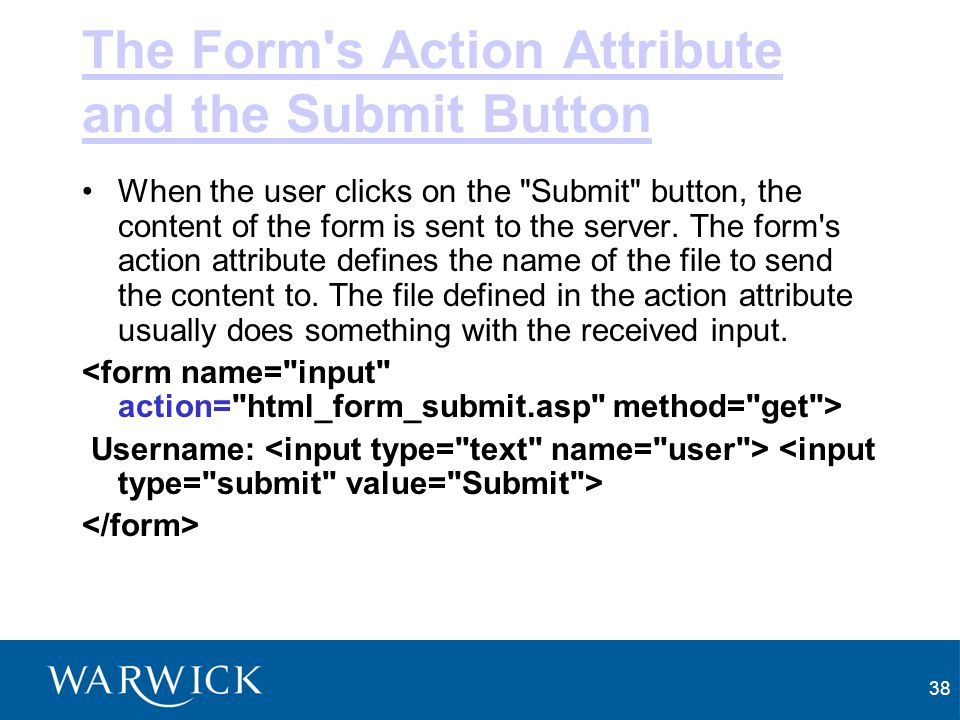 The Form s Action Attribute and the Submit Button