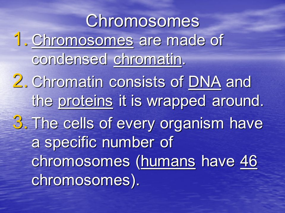 Chromosomes Chromosomes are made of condensed chromatin.