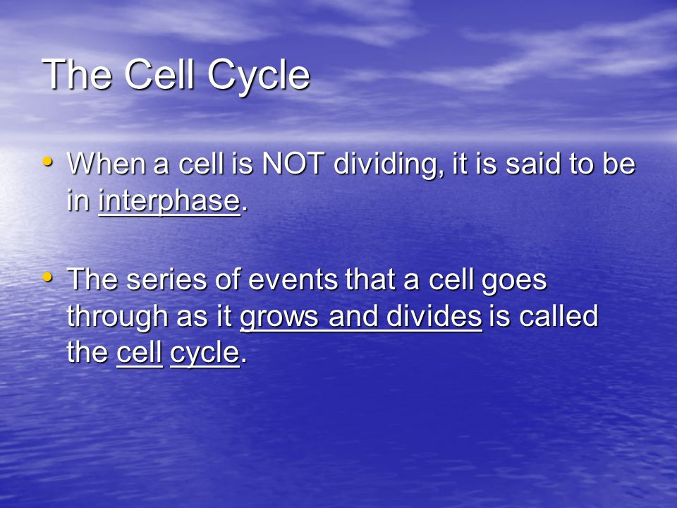 The Cell Cycle When a cell is NOT dividing, it is said to be in interphase.