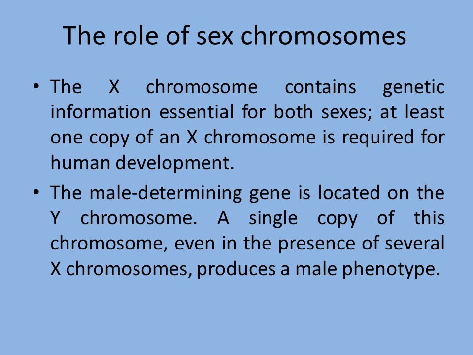 The role of sex chromosomes