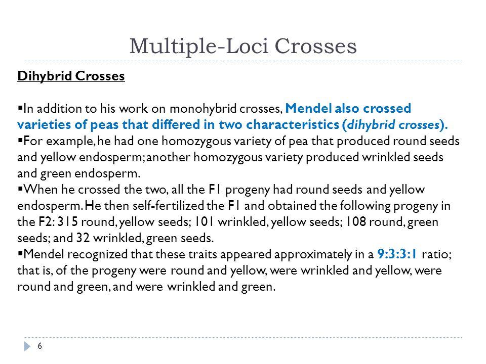 Multiple-Loci Crosses