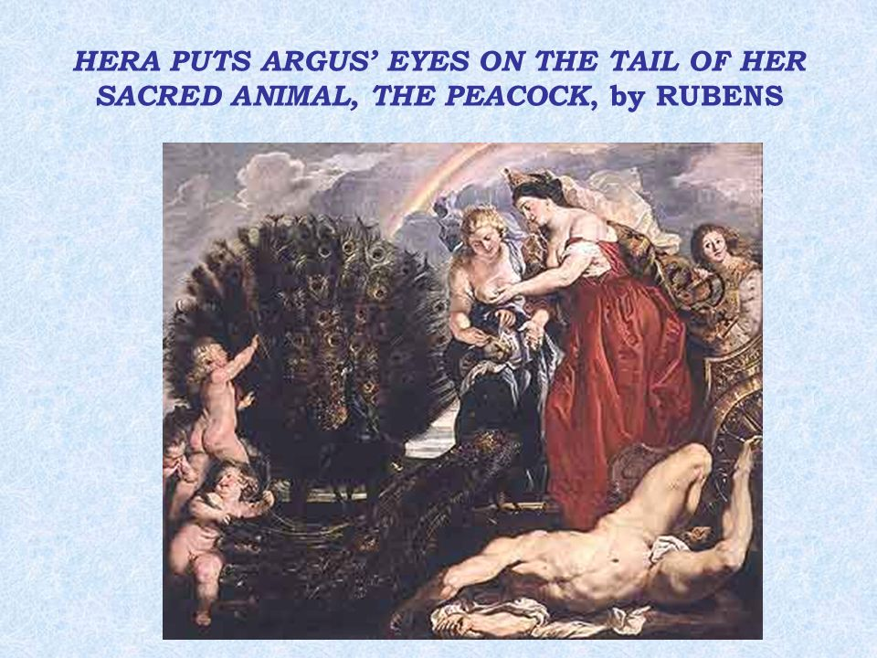 HERA PUTS ARGUS' EYES ON THE TAIL OF HER SACRED ANIMAL, THE PEACOCK, by RUBENS