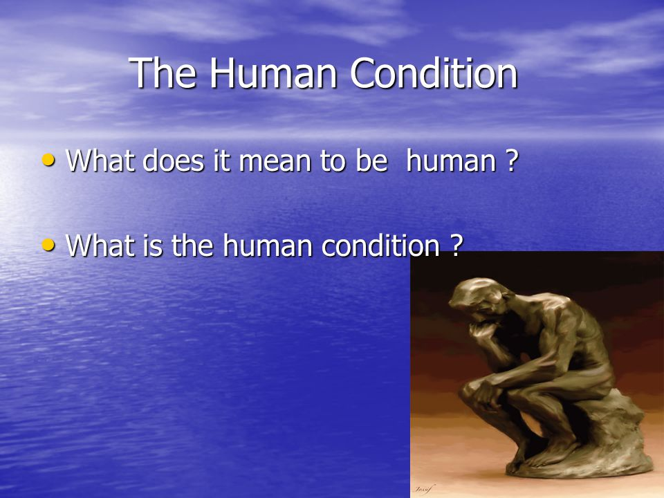 The Human Condition What does it mean to be human