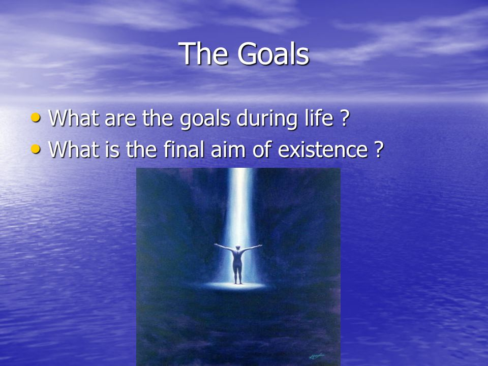 The Goals What are the goals during life