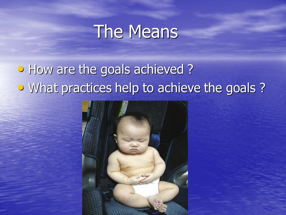 The Means How are the goals achieved