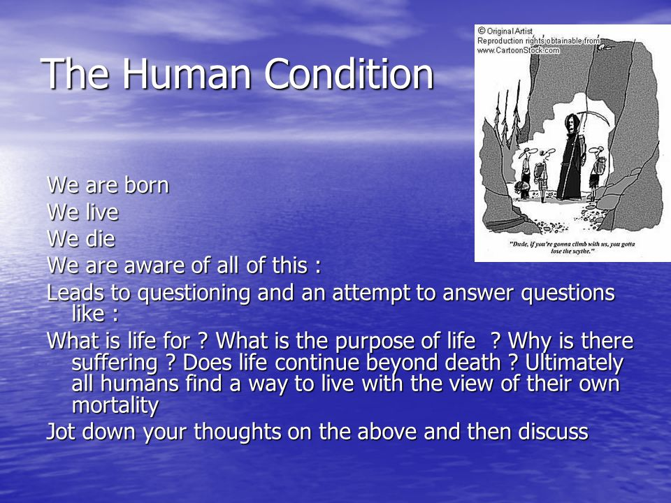 The Human Condition We are born We live We die