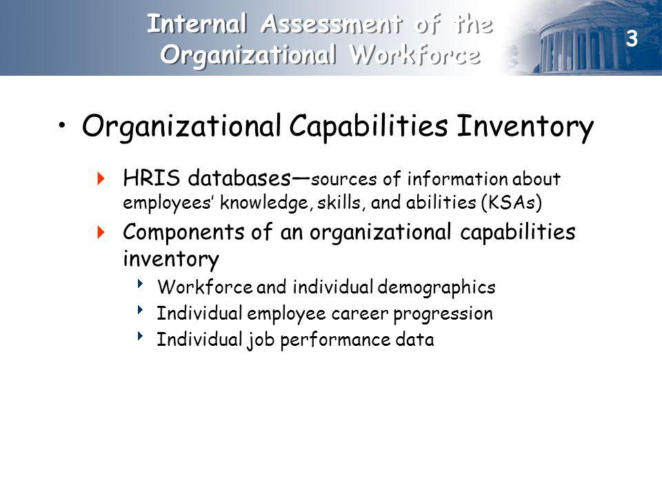 Internal Assessment of the Organizational Workforce