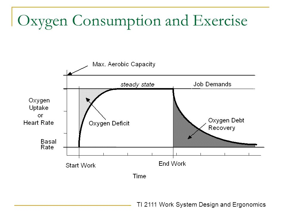 Oxygen Consumption and Exercise