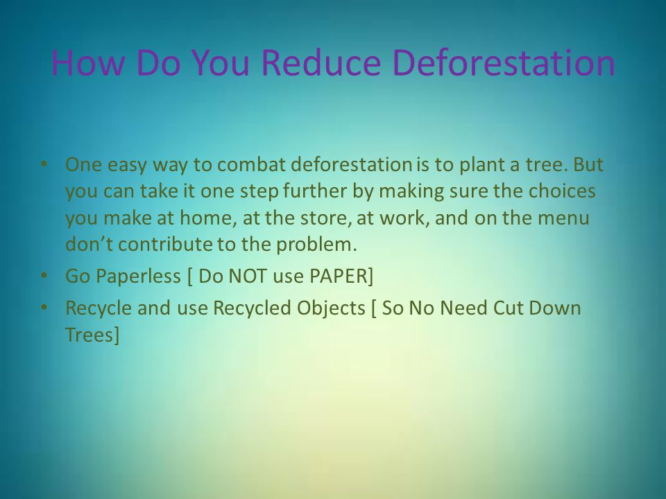 How Do You Reduce Deforestation