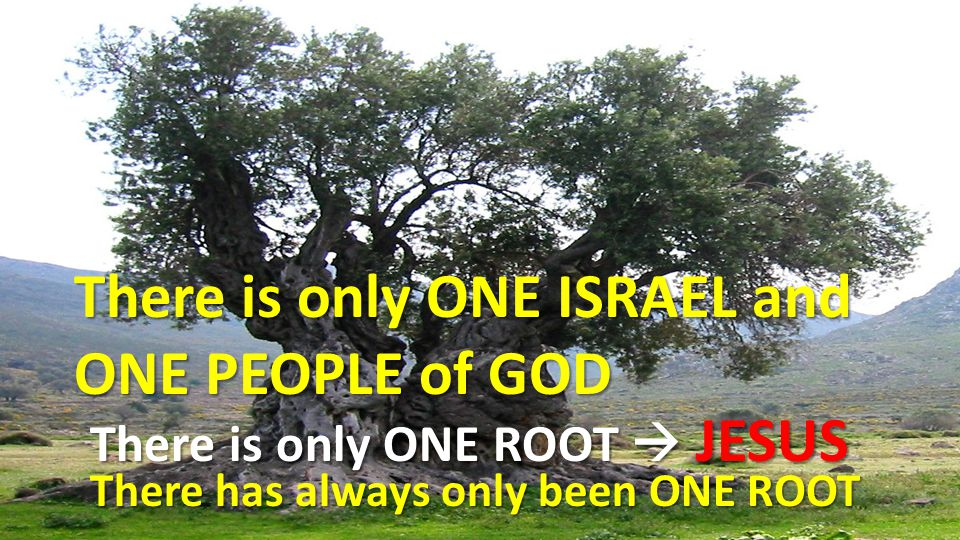 There is only ONE ISRAEL and ONE PEOPLE of GOD