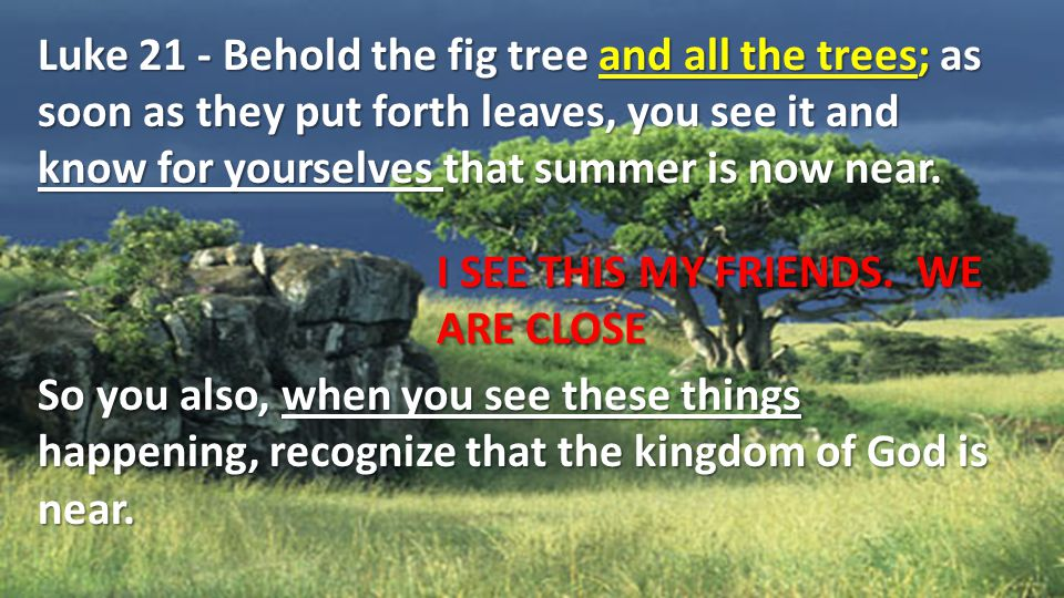 Luke 21 - Behold the fig tree and all the trees; as soon as they put forth leaves, you see it and know for yourselves that summer is now near.