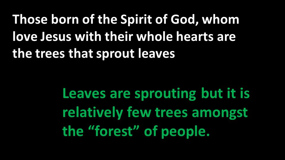 Those born of the Spirit of God, whom love Jesus with their whole hearts are the trees that sprout leaves