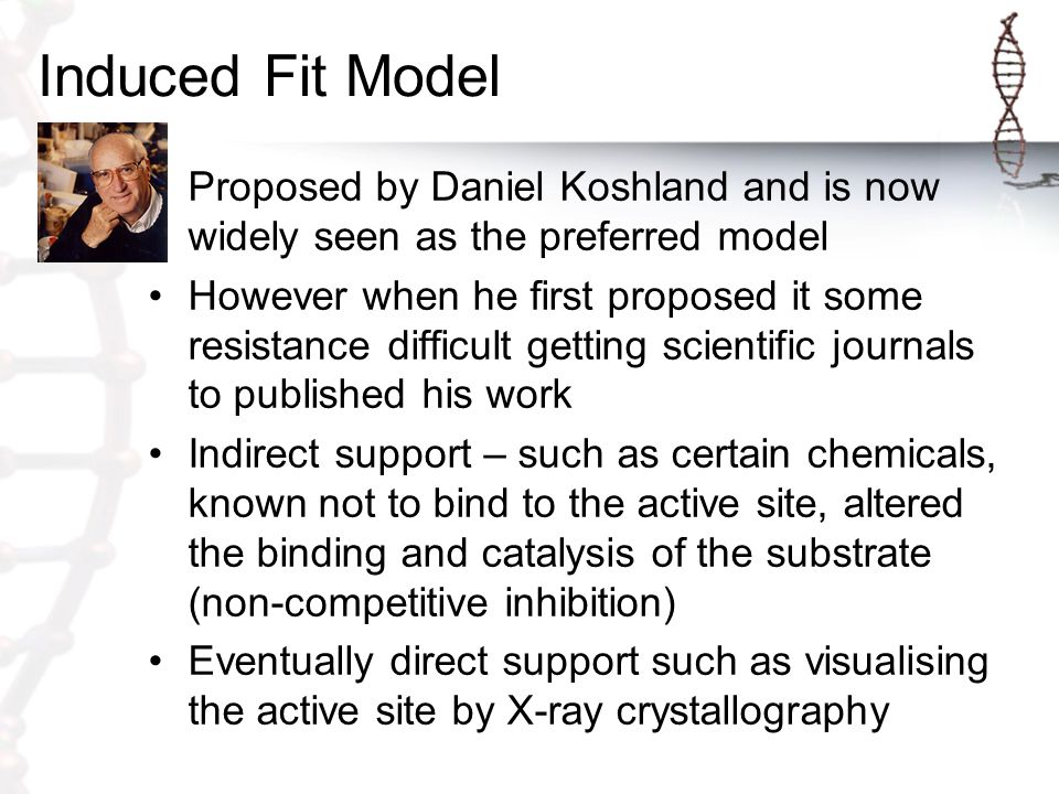 Induced Fit Model Proposed by Daniel Koshland and is now widely seen as the preferred model.