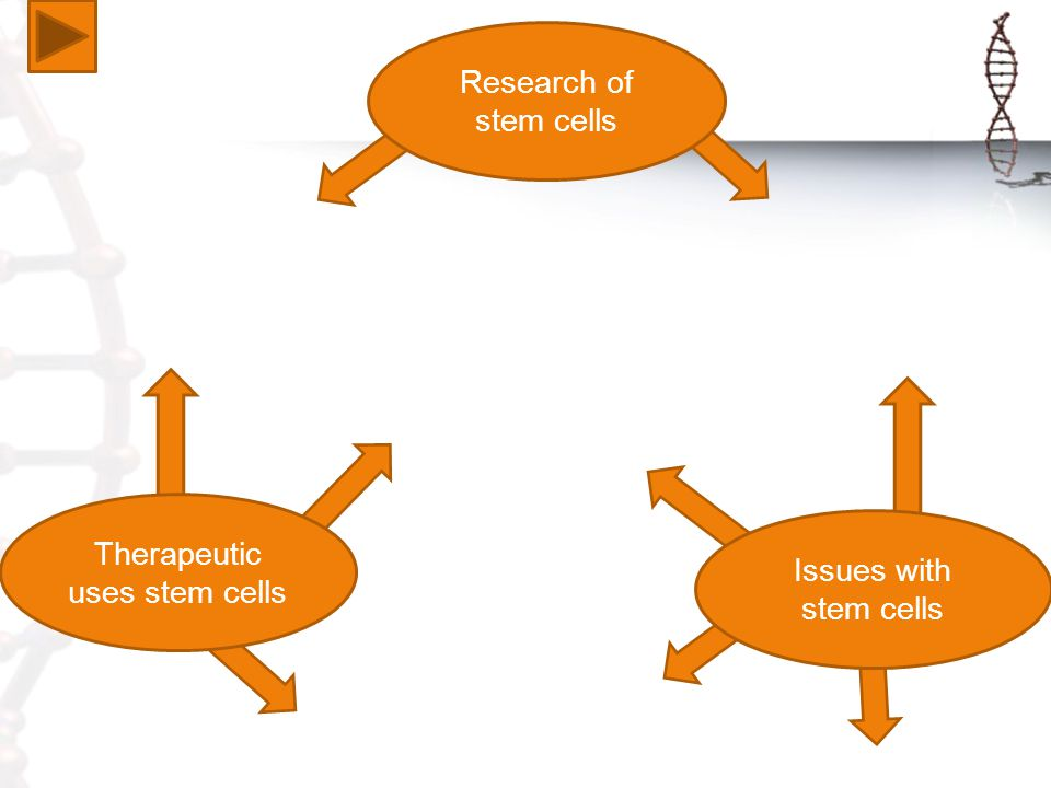 Therapeutic uses stem cells