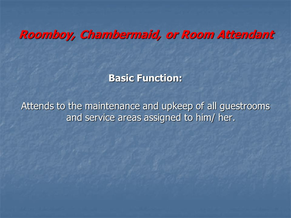 Roomboy, Chambermaid, or Room Attendant