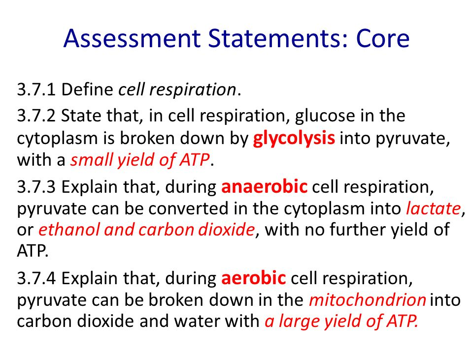 Assessment Statements: Core