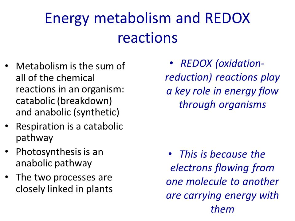 Energy metabolism and REDOX reactions