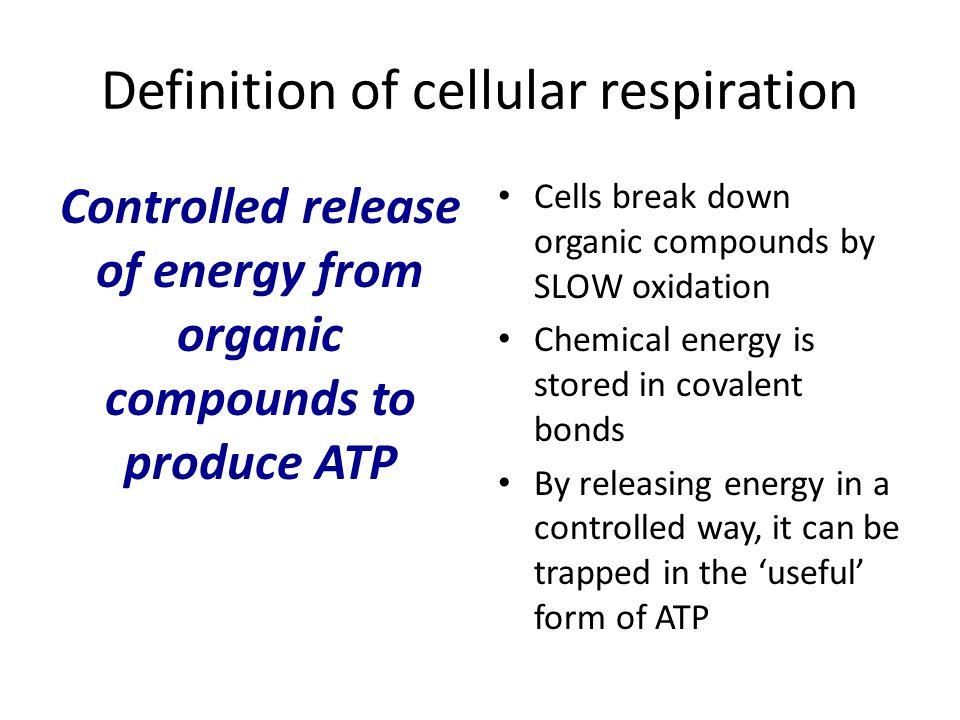 Definition of cellular respiration