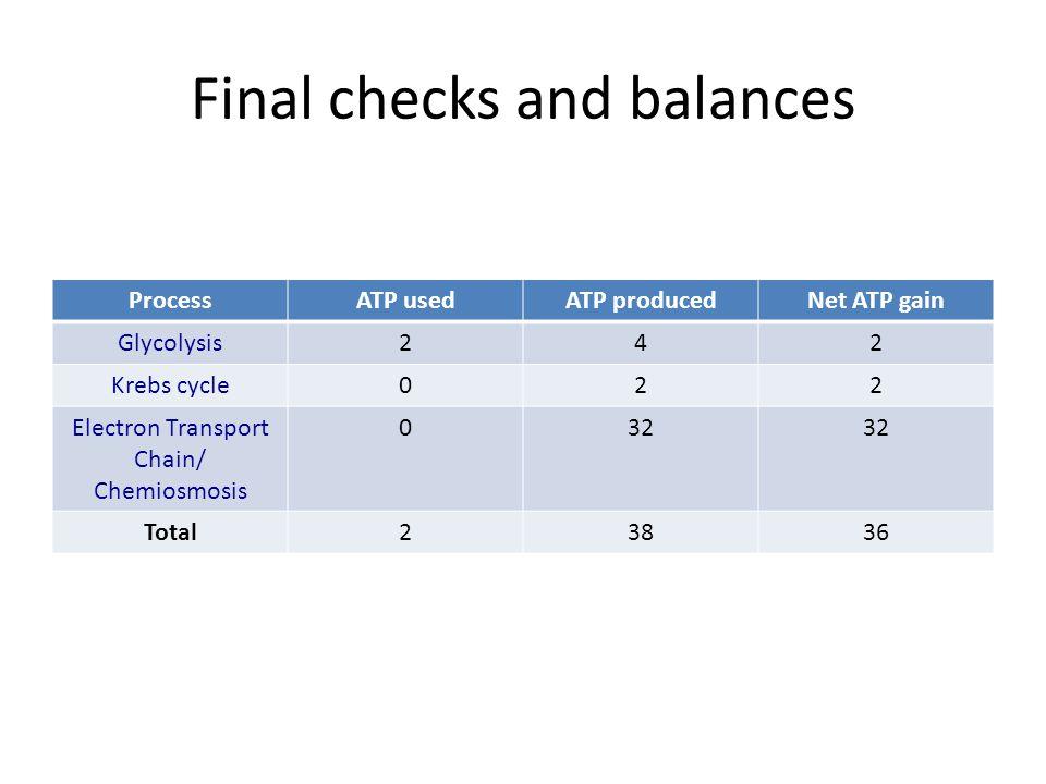 Final checks and balances