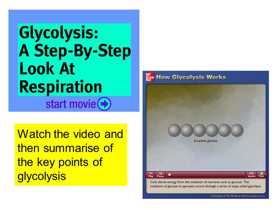 Watch the video and then summarise of the key points of glycolysis
