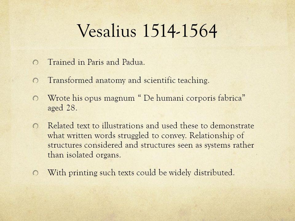 Vesalius 1514-1564 Trained in Paris and Padua.
