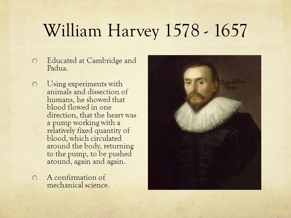 William Harvey 1578 - 1657 Educated at Cambridge and Padua.