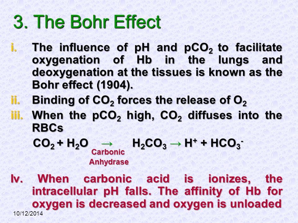 3. The Bohr Effect